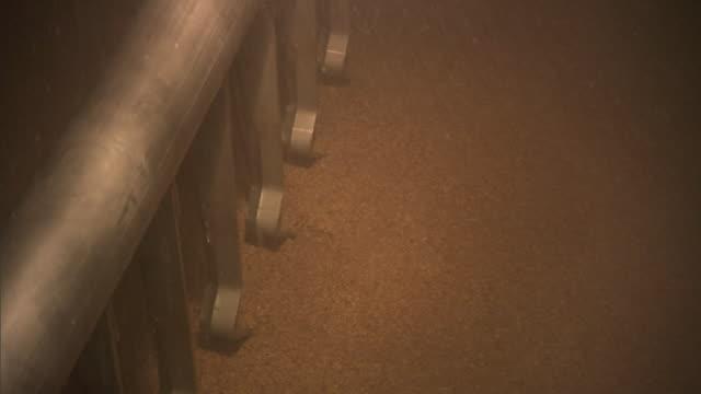 vídeos de stock, filmes e b-roll de water sprays on grain inside a fermenting machine. - cereal plant