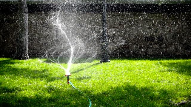 water sprinkler showering grass - sprinkler stock videos & royalty-free footage