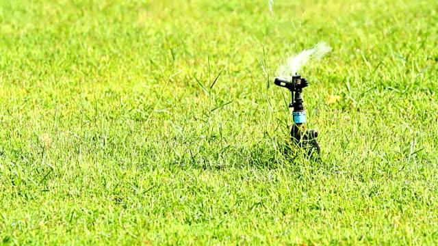 Wasser sprinkler