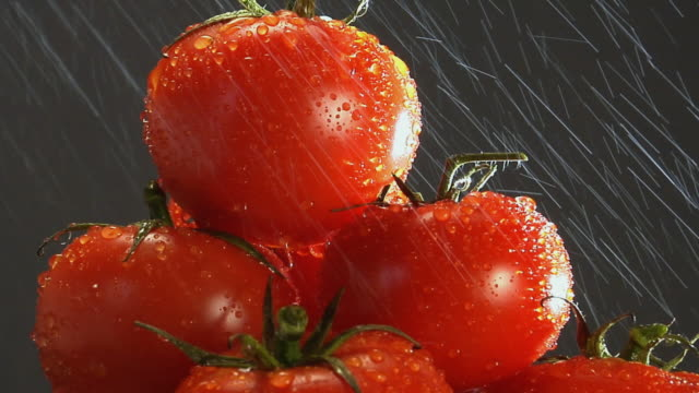 cu, water sprinkling on stack of red tomatoes - 少数の物点の映像素材/bロール