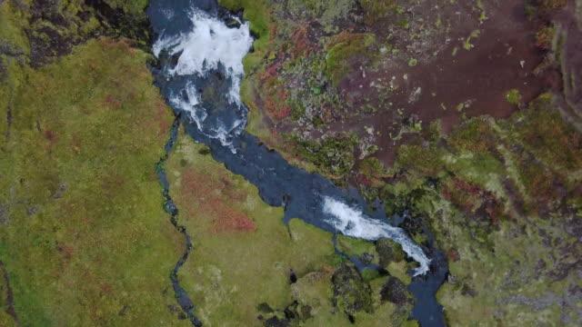 vidéos et rushes de jet d'eau d'en haut sur l'islande - mousse végétale