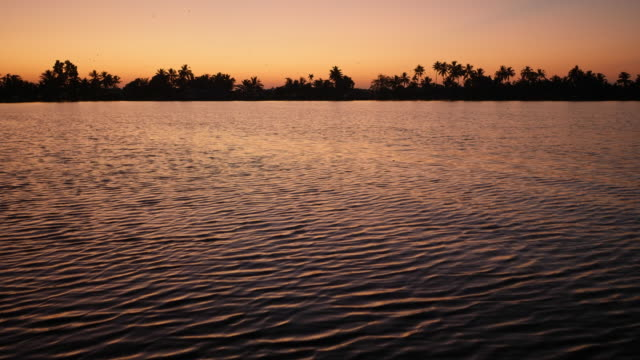 water surface at sunrise in alleppey backwaters, kerala india - backwater stock videos & royalty-free footage