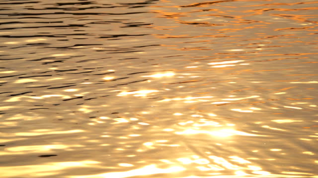 vídeos de stock e filmes b-roll de 4k: water surface at sunset - dourado cores