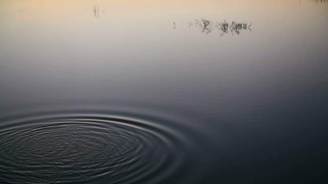 sfondo astratto al rallentatore della superficie dell'acqua - superficie dell'acqua video stock e b–roll