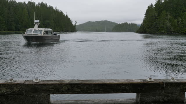water taxi around meares island, british columbia - water taxi stock videos & royalty-free footage