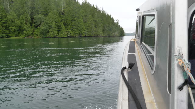 water taxi pov around meares island, british columbia - water taxi stock videos & royalty-free footage