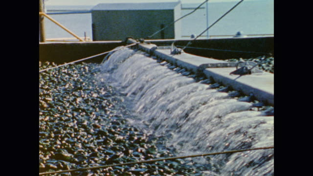 water treatment plant filters and sprays while out at sea waves ripple under the sun - guter zustand stock-videos und b-roll-filmmaterial