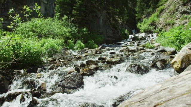 晴れた夏の日にコロラド州のロッキー山脈の山の流れを流れ落ちる水 - ロッキー山脈点の映像素材/bロール