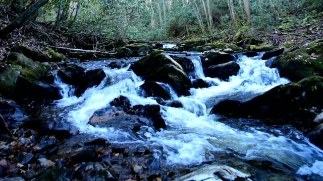 vídeos de stock, filmes e b-roll de água caindo sobre rochas em creek - riacho