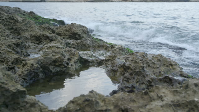 water washing onto reef, cuba - tidal pool stock videos and b-roll footage