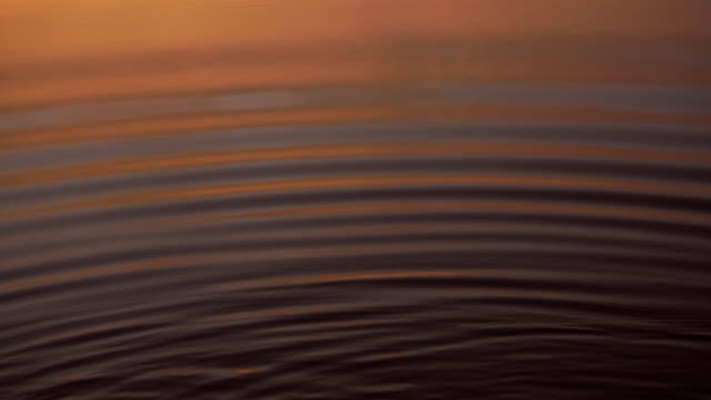 Water wave with reflection at sunset.