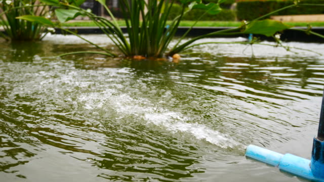 water with oxygen in the fish pond - pond stock videos & royalty-free footage