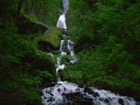 a waterfall among greenery - dreiviertelansicht stock-videos und b-roll-filmmaterial