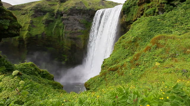 waterfall and green grass. - waterfall stock videos & royalty-free footage