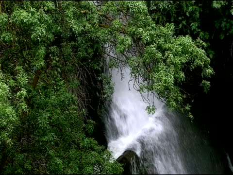 waterfall, andalucia, spain - felswand stock-videos und b-roll-filmmaterial