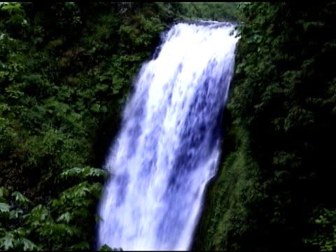 waterfall at multnomah falls, in portland, oregon - multnomah falls stock videos & royalty-free footage