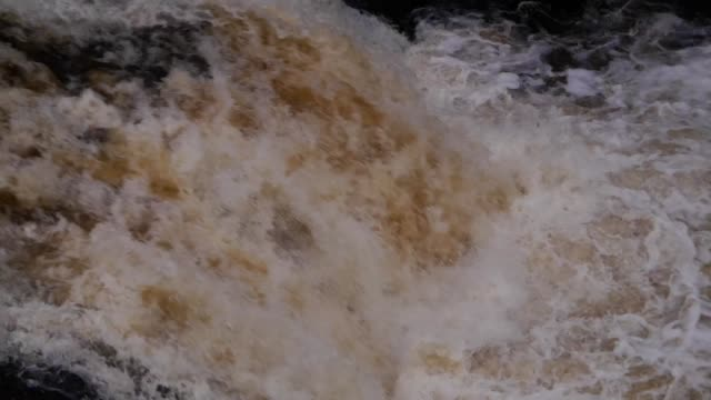 waterfall at shin falls in the scottish highlands of sutherland scotland uk - migrating stock videos & royalty-free footage