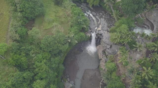 vídeos de stock e filmes b-roll de waterfall / bali, indonesia - queda de água