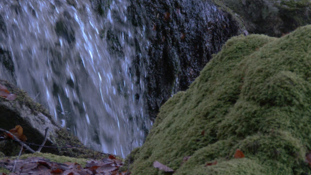 Waterfall behind a moss covered rock in Scottish woodland during autumn