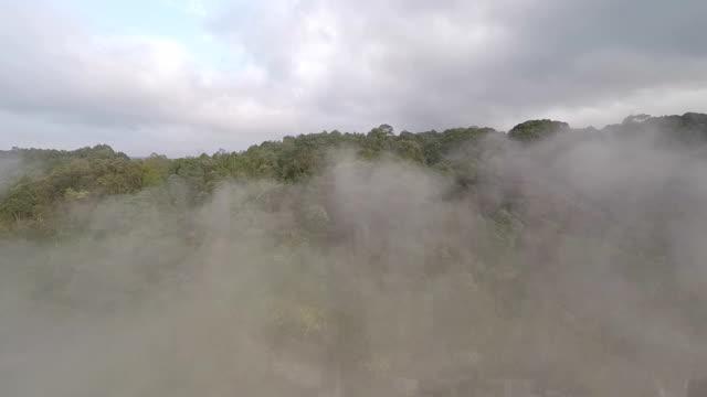 vídeos y material grabado en eventos de stock de waterfall behind thick cloud, revealed going down - isla de sumatra