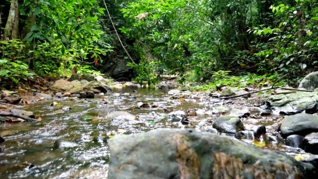 vídeos y material grabado en eventos de stock de canal de la cascada. - fuente corriente de agua