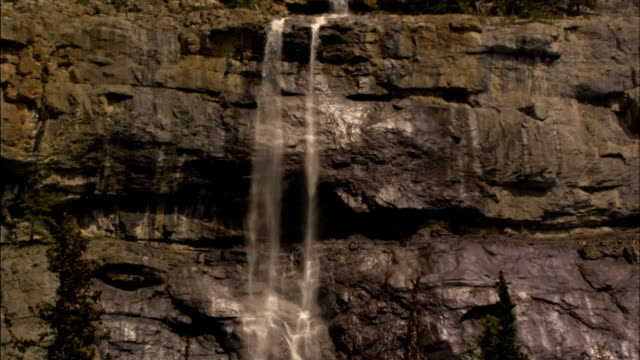 a waterfall cascades high over pine trees. - falling water stock videos & royalty-free footage