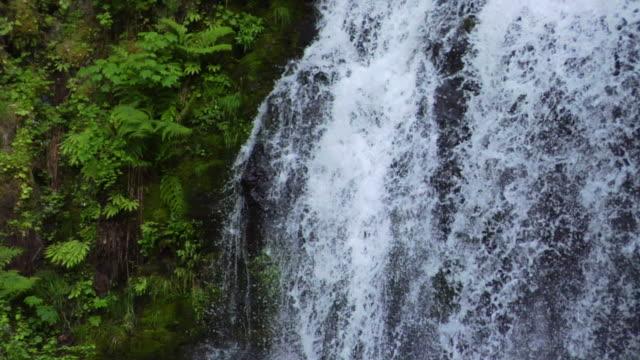 vídeos y material grabado en eventos de stock de cascada primer plano con obturador rápido - cascadas de multnomah