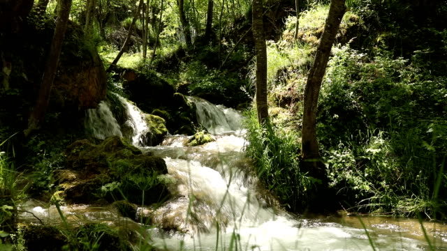 Waterfall, Close-up of Cascades of the Gostilje River on Zlatibor Mountain