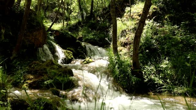 Waterval, Close-up voor Cascades van de Gostilje rivier op Zlatibor berg