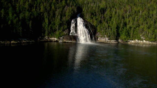 A waterfall crashes through an evergreen forest and into a fjord.