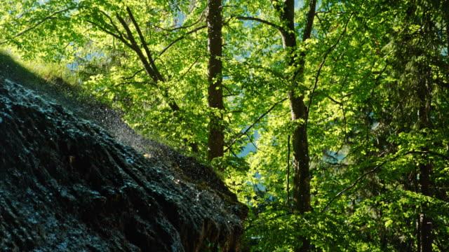 vídeos de stock, filmes e b-roll de ms slow motion gotas da cachoeira que caem sobre árvores e formação de rocha na floresta idílica - rocha