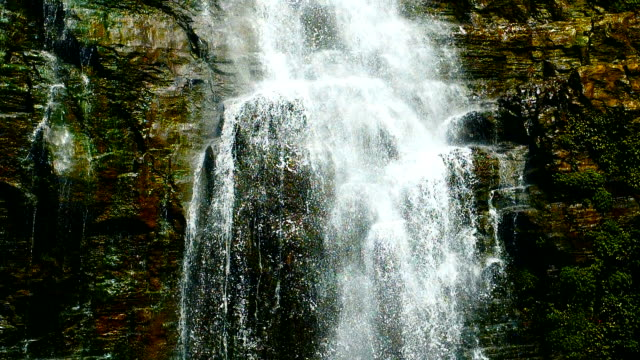 waterfall falling,slow motion - moss stock videos & royalty-free footage