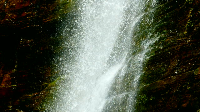 vídeos de stock e filmes b-roll de waterfall falling,slow motion - musgo