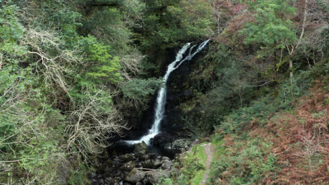 waterfall flowing into a small river in a woodland area of rural scotland - freshwater stock videos & royalty-free footage