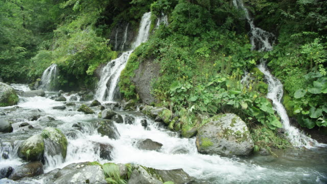 waterfall flows into stream, japan - 川点の映像素材/bロール