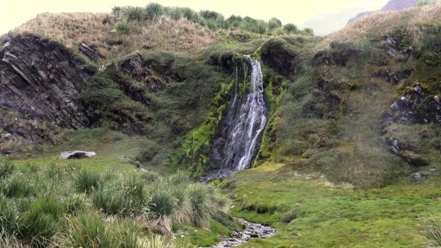 waterfall, fortuna bay, south georgia island, southern ocean - atlantikinseln stock-videos und b-roll-filmmaterial