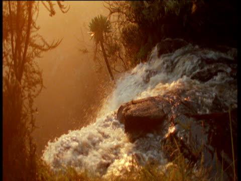 vídeos de stock, filmes e b-roll de waterfall gushes over ledge at sunset - peitoril de janela