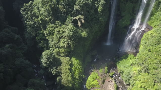 waterfall in bali / indonesia - ökotourismus stock-videos und b-roll-filmmaterial