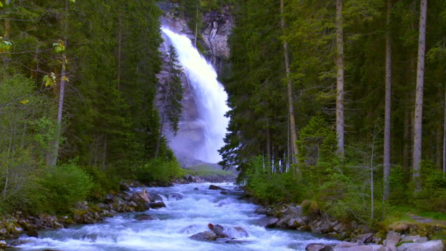 Waterfall In Coniferous Forest Cinemagraph