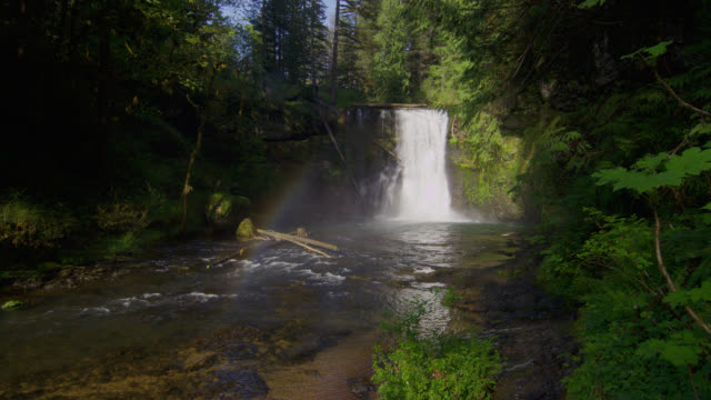 WIDE SHOT waterfall in creek in forest with rainbow in mist in foreground
