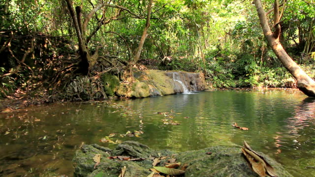 Waterfall in deep forest, dolly shot