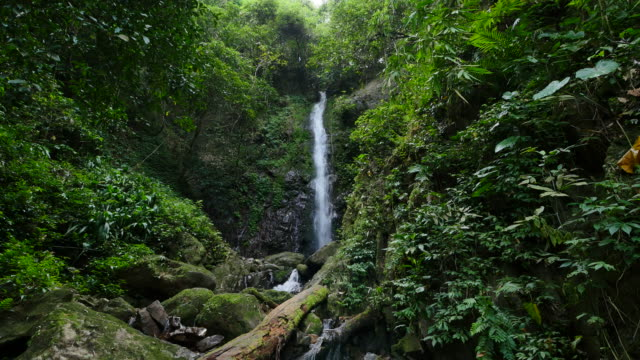 waterfall in deep forest, thailand. - tropical rainforest stock videos & royalty-free footage