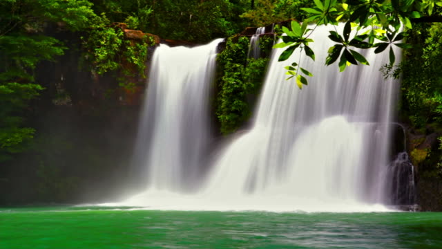 waterfall in forest - hawaii islands stock videos & royalty-free footage