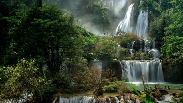 waterfall in forest. - tropiskt träd bildbanksvideor och videomaterial från bakom kulisserna