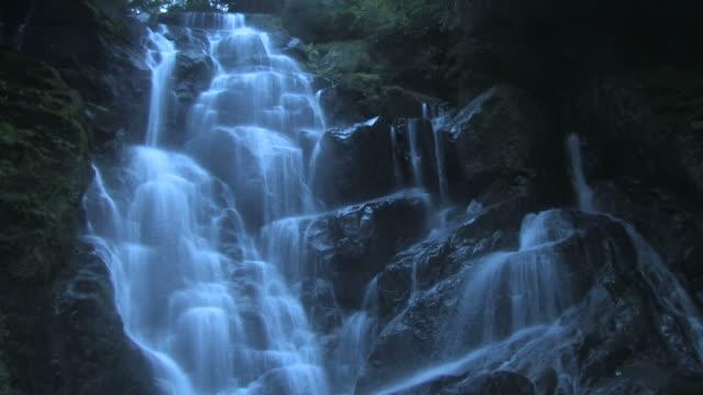 waterfall in forest - 小川点の映像素材/bロール