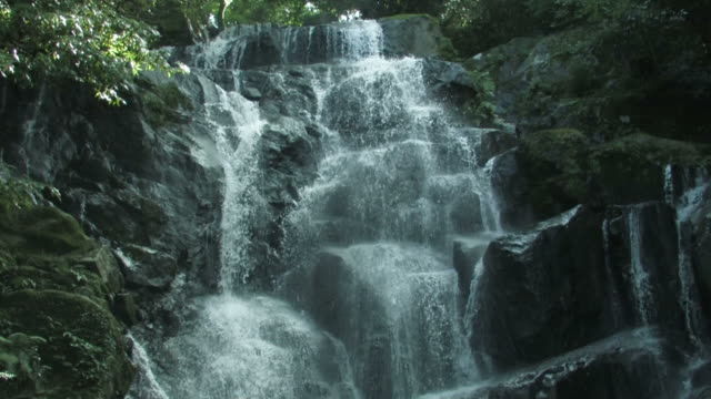 waterfall in forest - 30 seconds or greater stock videos & royalty-free footage