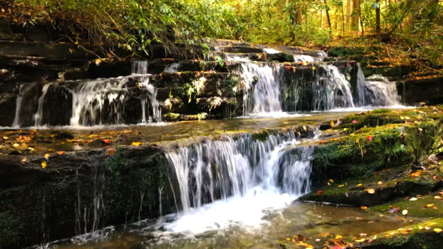 waterfall in great smoky mountains national park - rock stock videos & royalty-free footage