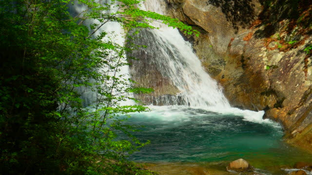 waterfall in green forest / nishizawa valley - waterfall stock videos & royalty-free footage