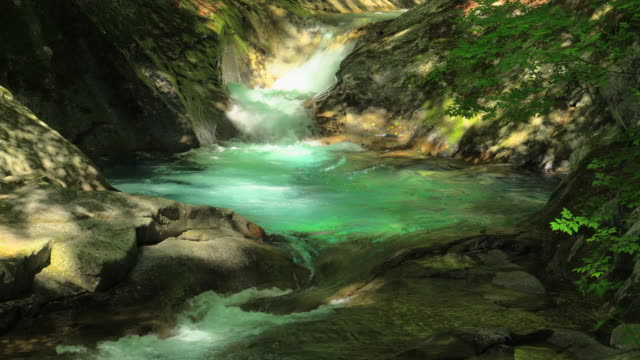 waterfall in green forest / nishizawa valley - plusphoto stock videos & royalty-free footage