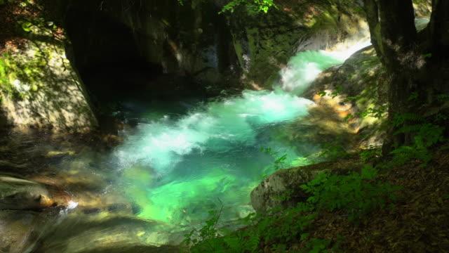 緑の森の滝 |西沢渓谷 - 季節点の映像素材/bロール